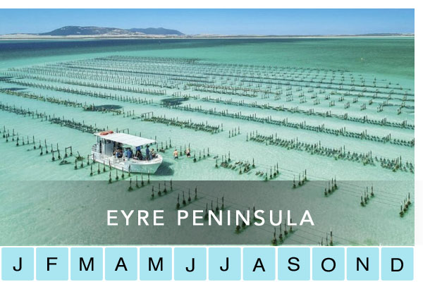 Eyre Peninsula Travel