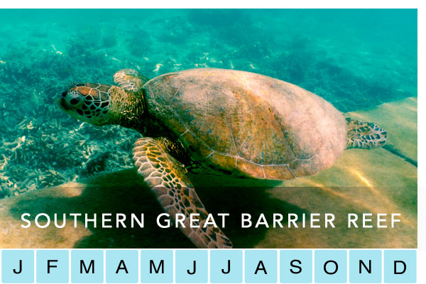 travel-southern-great-barrier-reef
