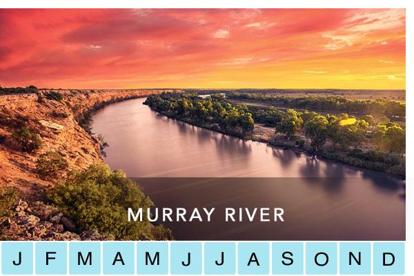 travel-murray-riverlands-fleurieu-peninsula-renmark