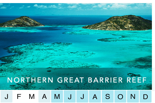 travel-northern-great-barrier-reef